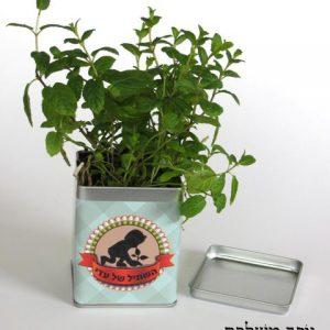 """שתיל בקופסא- שי לט""""ו בשבט קופסת ריבוע ממתכת משגעת, ממותגת באמצעות מדבקה, המיתוג יותאם אישית ויכול להכיל מסר / לוגו. מילוי הקופסא - אדמה ושקית זרעים קטנה, הזרעים ניתנים לבחירה (זרעי תבלין / זרעי פרח / זרעי שורשים). בחלקה האחורי של הקופסא ישנו הסבר על אופן השתילה והגידול. כיף לקבל מוצר שכזה שלבטח יגרוף המון מחמאות, מוצר מהמם, שמשאיר חותם בכל גינה או אדנית!"""