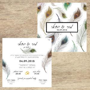 נוצות טווס - הזמנה לחתונה - נופך משלכם